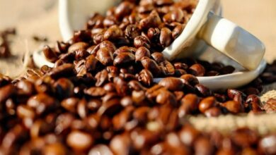Photo of Indonesia, S Korea to open international coffee school