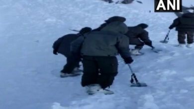 Photo of Five dead after avalanche strikes in Ladakh, search on for 7