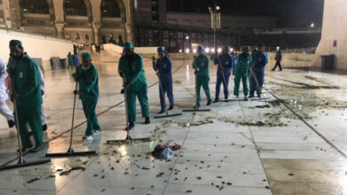 Photo of Thousands of black crickets swarm Makkah's grand mosque