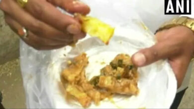 Photo of Zomato apologises after family 'finds' plastic fibre in paneer dishes