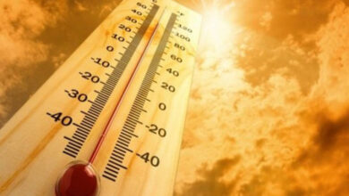Photo of Heat likely to increase next week – Doctors issue important advisories