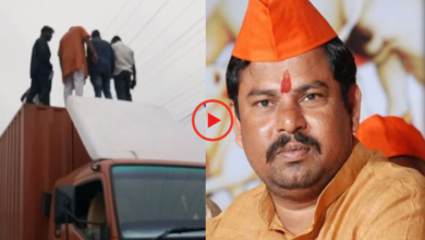 Photo of BJP MLA Raja Singh stops van carrying cows