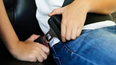 Photo of More than 90% risk their safety by not using rear seat-belts: Study