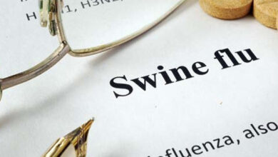 Photo of Swine flu claims 4 lives in Rajasthan, death toll touches 100 in state this year