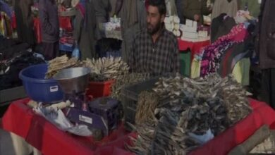 Photo of Kashmir Valley sees demand for Hoggard dry fish rise as temperature dips