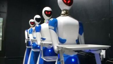 Photo of Chennai: Porur gets its first eatery where 'Robot Waiters' welcome customers