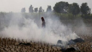 Photo of Air pollution ups hypertension risk in Indian women
