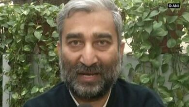 Photo of Separatists should be pushed out of Valley: Kashmiri activist