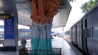 Photo of Chandigarh: Trees painted near railway station, environmentalists denounce move