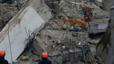 Photo of Death toll rises to 21 in Istanbul building collapse