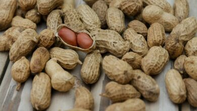 Photo of Eating small amounts of peanut after immunotherapy may extend allergy treatment benefits: Study