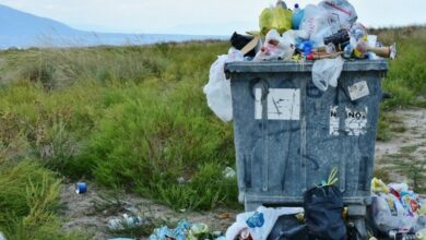 Photo of Millions of tons of plastic waste could be turned into clean fuels, other products
