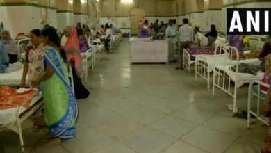 Photo of Swine flu claims 2 lives in Rajasthan, death toll touches 131 in state this year