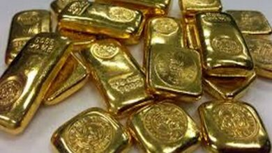 Photo of Gold worth Rs 7 lakh seized in West Godavari