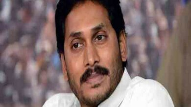 Photo of Reddy seeks revenue report to pitch special status need for Andhra Pradesh