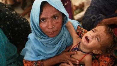 Photo of Millions malnourished in Pakistan despite abundance of food