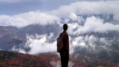 Photo of Study finds teens seeking solitude may know what's best for them