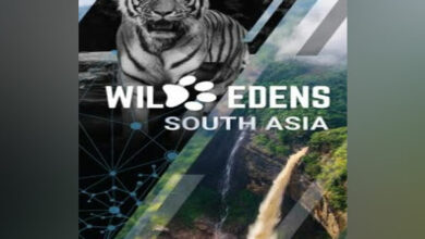 Photo of Wild Edens: South Asia- A new feature documentary dedicated to the fight against global warming