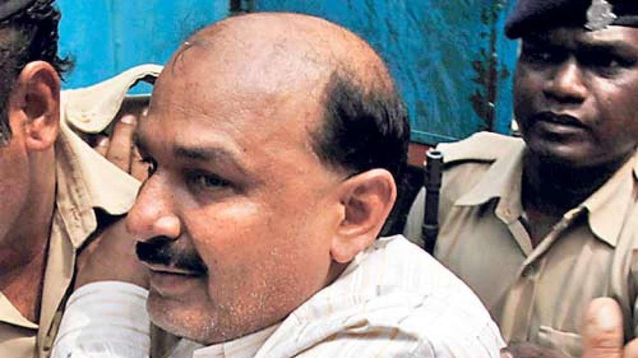 SC grants bail to Bajrangi convicted in Naroda Patiya case