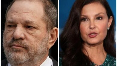 Photo of Ashley Judd's lawsuit against Harvey Weinstein paused