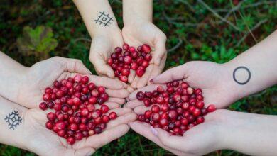 Photo of SheShines: Super-fruit US Cranberry celebrates womanhood