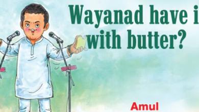"Photo of ""Amethi Ka Paratha"": Amul's latest comic features Rahul Gandhi"
