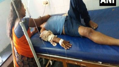 Photo of Andhra Pradesh: 7 dead, 9 injured after minibus collides with lorry