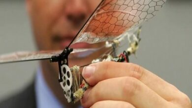 Photo of Insect Arm inspired drones invented using in-flight adjustments technology