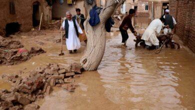 Photo of Afghanistan: Flash floods kill 20 people across Herat, Badghis