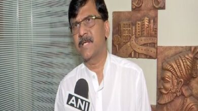 Photo of Not any single party but NDA will form govt after LS polls, says Sanjay Raut