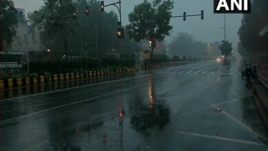 Photo of Thunderstorm with squall likely in Delhi today: IMD