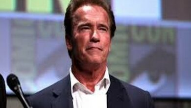 Photo of Arnold Schwarzenegger to lend his voice for 'Stan Lee's Superhero Kindergarten'