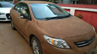 Photo of Woman covers car with cow dung to keep it cool