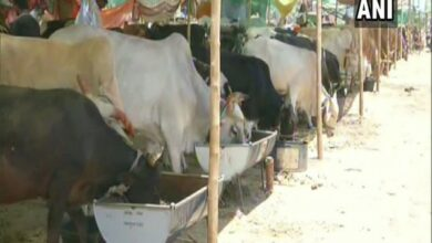 Photo of Fodder camps for cattle set up in drought affected Aurangabad