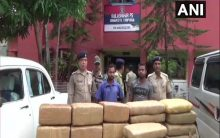 Ganja worth Rs 25 lakh seized in Tripura