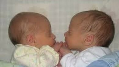 Photo of Multiple-birth families need support to improve outcomes: Study
