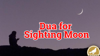 Photo of Dua for Sighting Moon