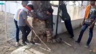 Photo of New India: 3 Muslims thrashed by Gau Rakshaks, forced to chant 'Jai Shri Ram'