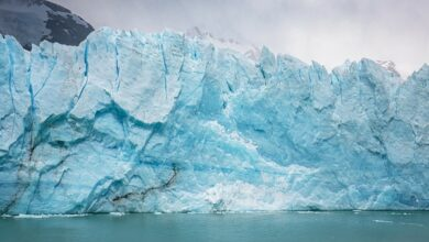 Photo of World heritage glaciers are set to disappear by 2100, reveals study