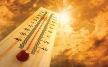 Telangana: 16 people died of sun stroke in one day