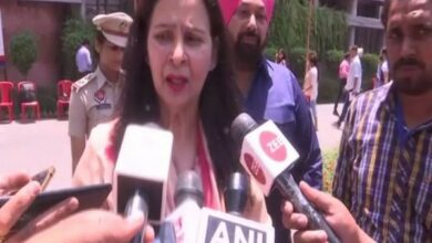 Photo of Captain Amarinder should resign if Cong gets wiped out in LS polls: Navjot Kaur