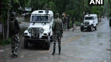 Photo of Injured militant apprehended, another's body found in Anantnag