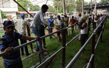 Preparations at Exhibition Grounds,