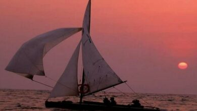 Photo of Search underway for missing fisherman in Kochi