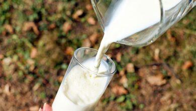 Photo of Milk is costlier than petrol in Pak