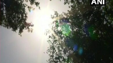 Photo of No relief in sight, heatwave conditions to continue for 2 days