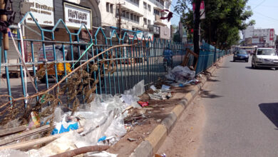 Photo of Garbage dumped in Road divider at Madina X Road