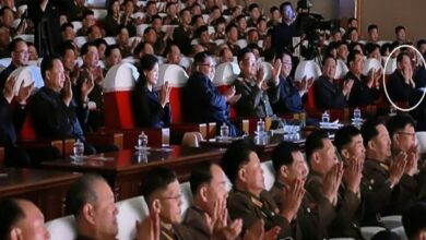 Photo of 'Purged' top NK envoy seen with Kim Jong-un at a show