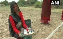 Bundelkhand: Farmers perform rituals to please rain god