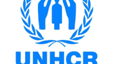 Photo of More than 70 mn forcibly displaced worldwide: UNHCR